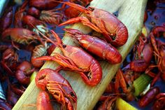 Crawfish Boil Expert boilers give you their advice New Orleans Christmas, Small Red Potatoes, Louisiana Seafood, Garlic Bulb, Good Times Roll, Frozen Corn, Helpful Hints, Handy Tips, Easy Salads