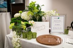 A refreshing green and white palette