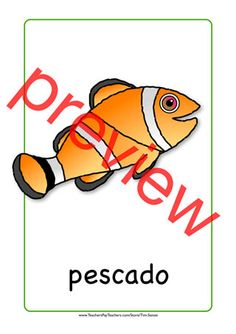 Spanish flash card - orange and black fish