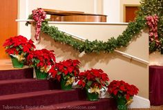Church Christmas Decorations - letter of recommendation Church Christmas Decora. Church Christmas Decorations – letter of recommendation Church Christmas Decora… Church Chris Church Altar Decorations, Church Christmas Decorations, Christmas Stage, Christmas Themes, Christmas Wedding, Christmas Staircase, Classy Christmas, Office Christmas, Table Decorations