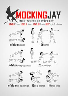 Mockingjay Workout