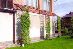 Вертикальное озеленение для украшения стены 93 фото