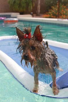 The Gidget believes that fashion is important even while poolside.