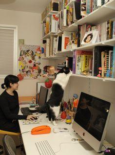 FAVORITOS - CAROL GRILO - dcoracao.com - blog de decoração