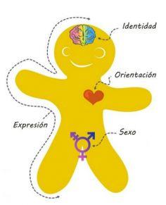 36 Mejores Imágenes De Identidad De Género En La Infancia