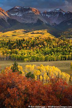 Autumn colors in the San Juan Mountains, Colorado