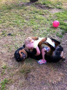 """Outstanding """"Rottweiler dogs"""" info is offered on our internet site. Check it out and you wont be sorry you did. German Rottweiler, Rottweiler Puppies, Cute Puppies, Cute Dogs, Dogs And Puppies, Chihuahua Dogs, Doggies, Big Dogs, I Love Dogs"""