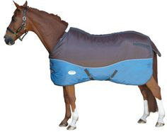 Belly Wrap Horse Blankets- 1,686 results like Jackstack Tough-1Belly Wrap Horse Blankets- 1,686 results like Jackstack Tough-1Belly Wrap Stable Blanket, JTI Tough-1 600D MiniatureBelly Wrap Horse Blankets- 1,686 results like Jackstack Tough-1Belly Wrap Horse Blankets- 1,686 results like Jackstack Tough-1Belly Wrap Stable Blanket, JTI Tough-1 600D MiniatureStable BlanketwithBelly Wrap Horse Blankets- 1,686 results like Jackstack Tough-1Belly Wrap Horse Blankets- 1,686 results like Jackstack Tough-1Belly Wrap Stable Blanket, JTI Tough-1 600D MiniatureBelly Wrap Horse Blankets- 1,686 results like Jackstack Tough-1Belly Wrap Horse Blankets- 1,686 results like Jackstack Tough-1Belly Wrap Stable Blanket, JTI Tough-1 600D MiniatureStable BlanketwithBelly Wrap, Purple, Tough …