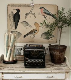 Vintage vignette - rolled maps, remington typewriter, water bucket with the bird print behind
