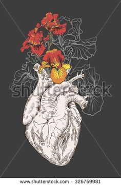 drawing Human heart with flowers background. vector - stock vector