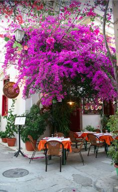 Taverna in Nafplio on the Peloponnese peninsula of Greece • photo: Liam Cheasty on Flickr