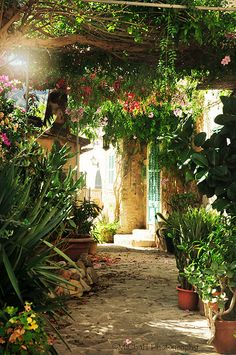 Deia village Outdoor Rooms, Outdoor Living, Outdoor Ideas, Countryside Village, Pergola Pictures, Heavenly Places, Majorca, Old Buildings, Places To Go