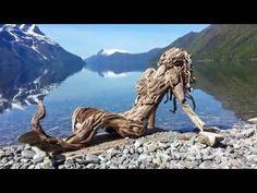 Driftwood art in Hungary by tamas kanya Land art Mermaid Sculpture, Mermaid Art, Lion Sculpture, Driftwood Sculpture, Driftwood Art, Driftwood Ideas, Painted Driftwood, Beach Print, Land Art
