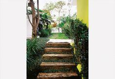 Como fica em área sombreada, a escada de dormentes recebeu grama-preta e minipândanos (Pandanus racemosus), à esq., espécies acostumadas a pouca luminosidade