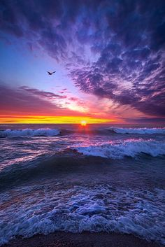A Promise of the Future by Phil Koch - Photo 126239251 - 500px (Lake Michigan, Wisconsin)