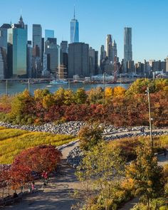Brookyn Bridge Park with Lower Manhattan in the background by... | New York City Feelings | Bloglovin'
