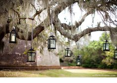 If you have a lot of trees in your garden, you can find a ton of hanging lantern ideas.  Like this one from Millie Holloman's Photography blog.