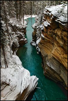 Athabasca Falls in the winter