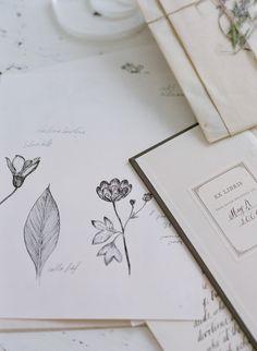 Maybelle Imasa-Stukuls botanical drawings | Photo by Elizabeth Messina
