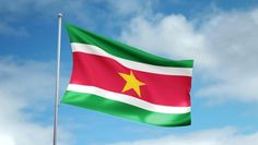 national flag of the suriname Thailand Flag, Flags Of The World, National Flag, Island, Countries, Google, World Flags, Flags, Islands