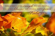 Psalm 29:11 The Lord gives strength to His people; The Lord blesses His people with peace.