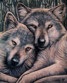 Wolf Snuggle Wall Plaque Art Print by UK Artist Lisa Parker - Loyal Companion Wolves Art Wolf Spirit, Spirit Animal, Fantasy Wolf, Fantasy Art, Lisa Parker, Two Wolves, Wolves Art, Wolf Wallpaper, Beautiful Wolves