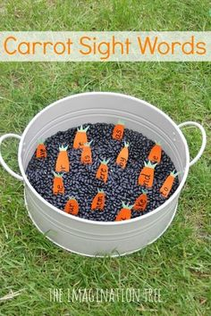Dig for word carrots with this gardening sensory tub sight words activity! A playful way to practise literacy skills and learn new sight words. Eyfs Activities, Sight Word Activities, Easter Activities, Preschool Activities, The Carrot Seed Activities, Literacy Skills, Early Literacy, Olivers Vegetables, Reception Class
