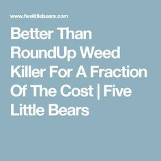 Better Than RoundUp Weed Killer For A Fraction Of The Cost | Five Little Bears