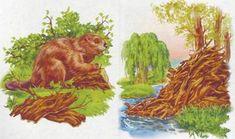 Pond Life, Winter Crafts For Kids, Animal House, Speech Therapy, Habitats, Kindergarten, Clip Art, Illustration, Nature