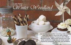 winter wonderland party...