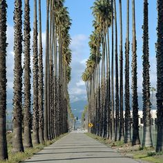 North Redlands, California, USA (by eyetwist) Redlands California, California Dreamin', Big Sur, Orange County, San Diego, Palm Lines, Las Vegas, San Bernardino County, Way To Heaven