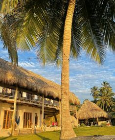 Tayrona National Park, I Site, National Parks, Cabin, Mansions, House Styles, Home Decor, Decoration Home, Manor Houses
