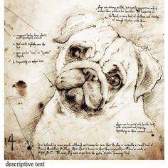 Projeto Leonardo da Vinci..hehehehe