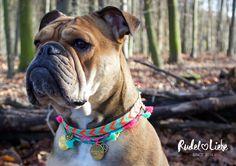 www.rudelliebe.de Halskette Hunde Hundehalskette #hund #hunde #hundehalsband #hundeleine #leine #halsband #tau #tauwerk #boho #hippie #rudelliebe #bully #bulldog #dog #ilovemydog #free
