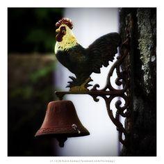 [2013 - Geraz do Minho - Portugal] #fotografia #fotografias #photography #foto #fotos #photo #photos #local #locais #locals #europa #europe #turismo #tourism #galinha #gallina #rooster #chicken #sino #campana #bell @Visit Portugal @ePortugal