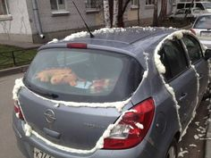 Another Parking Vigilante Victim? Search for Fun - Funny Clone Funny Pics, Funny Pictures, Image, Pictures 2018 Funny pictures, Another Parking Vigilante Funny As Hell, Haha Funny, Hilarious, Lol, Funny Pictures Images, Funny Photos, Random Pictures, Car Memes, Car Humor