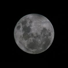 The Full Moon Last Night