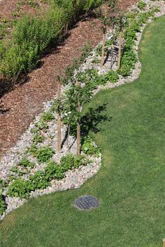 RockKivitalo Villa Aletta, Tiikerinsilmä 9. Pieniä seulanpääkiviä on käytetty katteena. http://www.rudus.fi/pihakivet