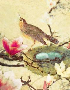 """""""Bird in the Magnolia Nest"""" by Hadley Hutton available at etsy."""