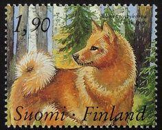 Finnish Spitz finsk spets dog Finland by PassionGiftStampArt