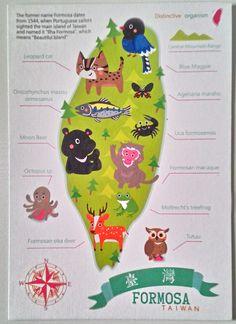 Moon Bear, Leopard Cat, Taiwan, Symbols, Map, Postcards, Projects, Ideas, Design