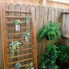 12 DIY Ideas for Patios, Porches and Decks - vertical plant structure