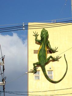 giant lizard climbing up a building