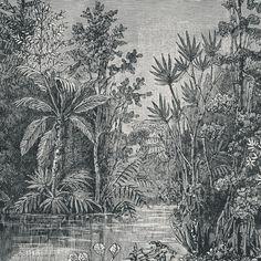 Art for the Home Jungle Fotobehang in Black Images Jungle, Jungle Pictures, Jungle Drawing, Jungle Art, Gravure Illustration, Jungle Scene, Tropical Fabric, Engraving Illustration, Art Vintage