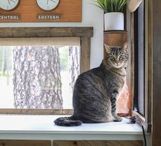 Come see how easy it is to frame RV windows to create a cozier vibe inside your tiny home on wheels!