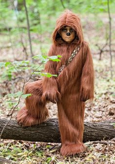 Chewbacca, Yoda And An Ewok Have A Secret Meeting In The Woods