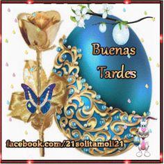 Buenas Tardes…