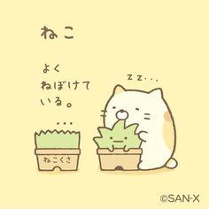 すみっコぐらし【公式】 (@sumikko_335) | Twitter
