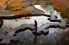 aménagement extérieur: bassin avec passages en bois magnifique