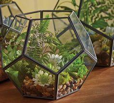 Create a Terrarium in 3 Simple Steps | World Market  Geo Terrarium SKU# 490799 ($19.99-39.99)